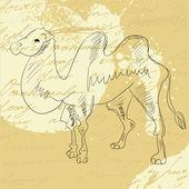 Wielbłąd na tło grunge — Wektor stockowy