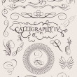 Vector set: calligraphic design elements and page decoration - Imagens vectoriais em stock