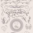 Stock Vector: Vector set: calligraphic design elements and page decoration
