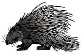 Crested Porcupine (Hystrix Cristata) — Stock Photo