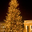 Christmas tree brandenburger tor - Foto de Stock