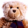 Royalty-Free Stock Photo: Teddy Bear