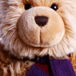Stock Photo: Teddy Bear