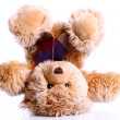 Cute Teddy Bear — Stock Photo #6764024