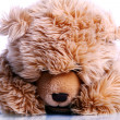 Cute Teddy Bear — Stock Photo #6764031