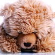 Stock Photo: Cute Teddy Bear