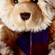 Cute Teddy Bear — Stock Photo #6764037