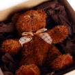 Cute Teddy Bear in the box - Photo