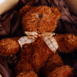 Cute Teddy Bear in the gift box — Stock Photo