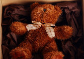 Cute Teddy Bear in the box — Stock Photo