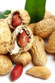 Заделывают свежие арахиса — Стоковое фото