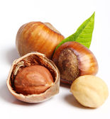 Close up of hazelnuts — Stock Photo