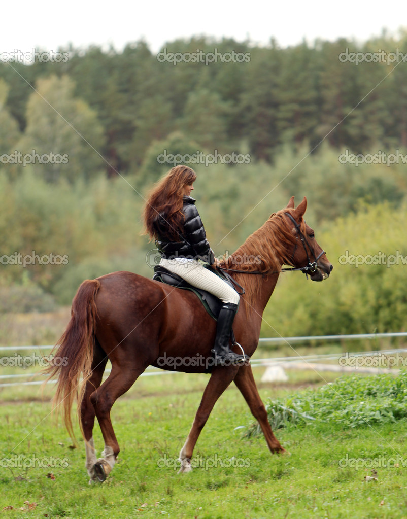 Woman and her beautiful  brown horse — Stock Photo #7182210