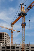 Construction cranes — Stockfoto