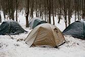 Seyahat çadır — Stok fotoğraf