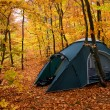 Tent in the autumn forest — Stock Photo #7500971