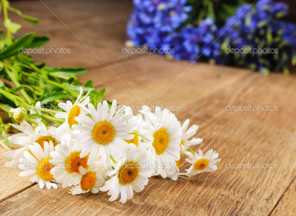Fresh camomile flowers on the wooden table — Foto Stock #6962149