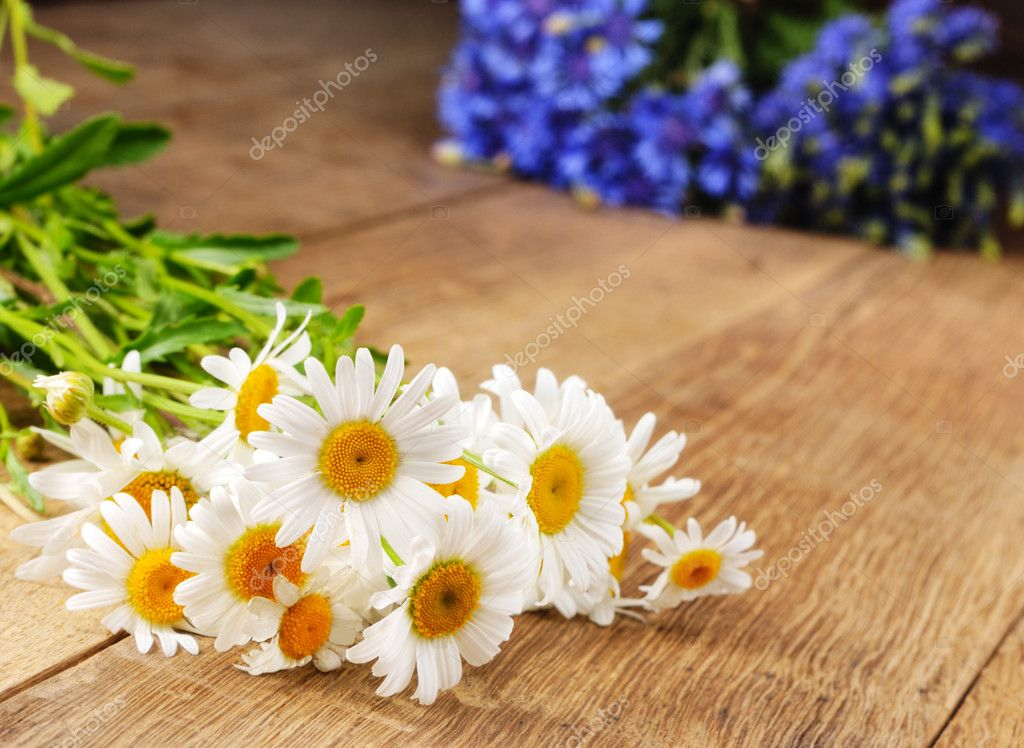 Fresh camomile flowers on the wooden table — ストック写真 #6962149