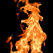 Fire flames raising high — Stock Photo
