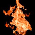 Fire flames raising high — Stock Photo #6943093