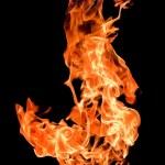 Fire flames raising high — Stock Photo #7006868