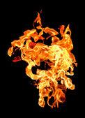 Fire flames raising high — Stock Photo