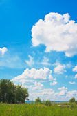 Blue sky over meadow — Stock Photo