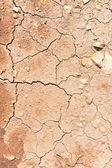 Scheuren op droge grond — Stockfoto