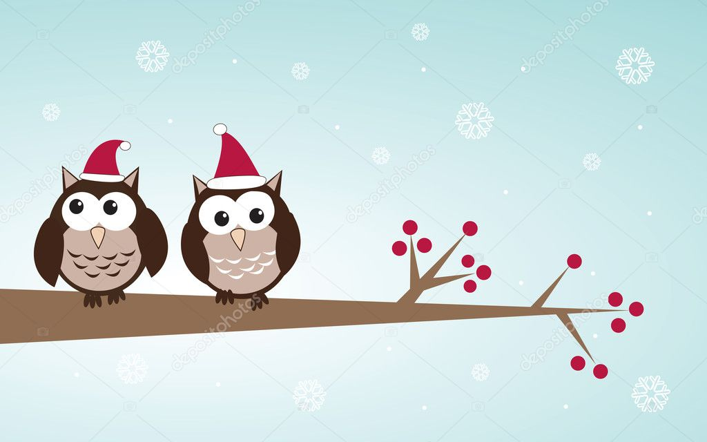 Owls couple in christm...