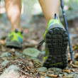 Woman exercising in forest — Stock Photo