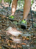 Woman legs hiking in forest — Stock Photo