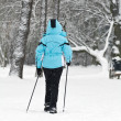 Nordic Walking on snow — Stock Photo