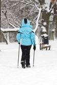 Nordic walking on snow — Stockfoto