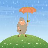 Cartoon sheep with umbrella. — Stock Vector