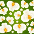 Background with beautiful orchids — Stock Vector #7216035