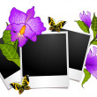 Photo frames with flowers and butterflies — Stock Vector