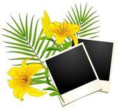 Fotoğraf çerçeveleri ile çiçekler — Stok Vektör