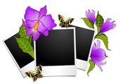 花朵与蝴蝶相框 — 图库矢量图片