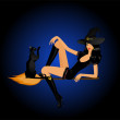 Beautiful sexy witch on a broom with a black cat — Stock Vector