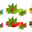 Christmas holly decorate with free stroke ribbons border — Stock Vector