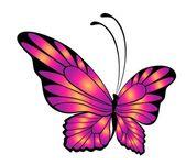 Bella farfalla per un design — Vettoriale Stock