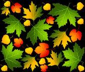 Fondo con hojas otoñales. — Vector de stock