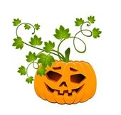 The carved face of pumpkin glowing on Halloween — Stock Vector