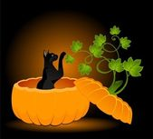 The carved face of pumpkin with cat on Halloween — Stock Vector