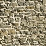 Gray primative masonry rock stone wall — Stock Photo #7670819