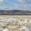 The cleaned fields covered with snow — Stock Photo