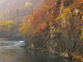 Autumn wood on a slope of mountain at the river — Stock Photo