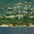 Alupka town and Vorontsov palace. View from the sea. Crimea. Ukraine — Stock Photo
