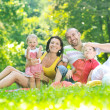 Happy young couple with their children have fun at park — Stock Photo #6771455