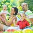 Happy young couple with their children have fun at park — Stock Photo #6772283